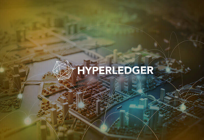 Hyperledger Development Services