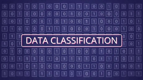 data classification Services